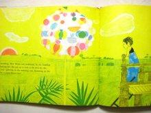 他の写真3: ジャクリーヌ・エイヤー「The Paper-Flower Tree」1962年