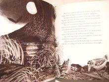 他の写真2: レナード・ワイスガード「the Little Woodcock」1967年
