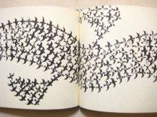 他の写真2: アルフレッド・オルシェウスキー「WINTERBIRD」1969年