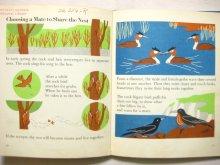 他の写真2: マリー・ノイラート「THE WONDER WORLD OF BIRDS」1953年