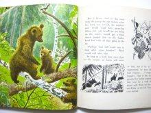 他の写真3: フェードル・ロジャンコフスキー「BRUIN The Brown Bear」1966年発行