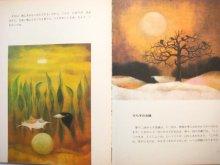 他の写真1: 【チェコの絵本】オタ・ヤネチェク「鳥のうたにみみをすませば」1980年