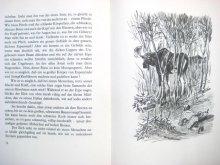 他の写真3: 【ロシアの絵本】エウゲーニー・M・ラチョフ「Der Sonnenspeicher」 1949年