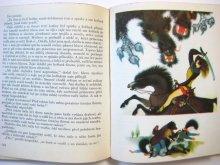 他の写真1: 【チェコの絵本】イジー・トゥルンカ「Pohadky bratri Grimmu」1969年