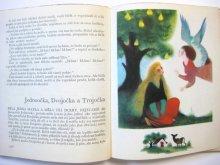 他の写真2: 【チェコの絵本】イジー・トゥルンカ「Pohadky bratri Grimmu」1969年