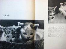 他の写真1: ヴァーツラフ・ジル「The Adventures of Susy the kitten」1963年