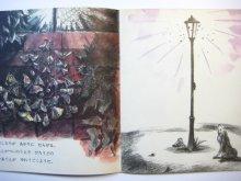他の写真3: 【かがくのとも】降矢洋子「もうひとつのよる」1975年