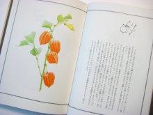 他の写真1: 三木卓/安野光雅「らんぷと水鉄砲」1982年