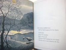 他の写真2: バーバラ・クーニー「Squawk to the Moon, Little Goose」1974年