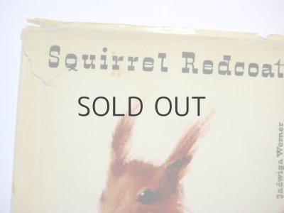 画像2: ヤーヌシ・グラビアンスキー「Squirrel Redcoat」1961年