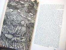 他の写真1: アントニオ・フラスコーニ「BEGINNINGS Creation Myths of the world」1979年