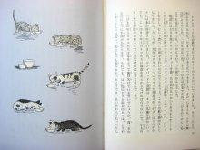 他の写真1: エスター・アベリル「のらネコ兄弟のはらぺこ放浪記」1979年