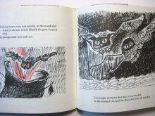 他の写真3:  リスル・ウェイル「When Animals had fire」1982年