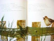 他の写真1: ヨゼフ・グッゲンモース/イルムガルト・ルフト「葉っぱのきもち」1990年