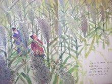 他の写真2: 【こどものとも】中国民話/佐藤忠良「おひゃくしょうとえんまさま」1969年