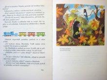 他の写真3: 【チェコの絵本】ズデネック・ミレル「Pohadkovy dedecek」1984年