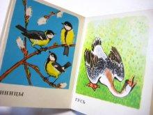他の写真2: 【ロシアの小さな絵本】ゴルロフ「КТО ЗТО?」1979年