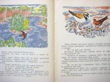 他の写真1: 【ロシアの絵本】ビアンキ/ニコラス・ティルサ「Лесные домишки」1969年