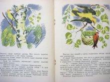 他の写真2: 【ロシアの絵本】ビアンキ/ニコラス・ティルサ「Лесные домишки」1969年