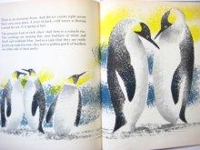 他の写真3: レナード・ワイスガード「Penguin's Way」1962年