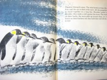 他の写真1: レナード・ワイスガード「Penguin's Way」1962年