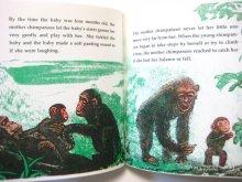 他の写真1: クレメント・ハード「The Mother Chimpanzee」1978年