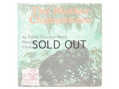 画像1: クレメント・ハード「The Mother Chimpanzee」1978年