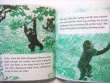 他の写真2: クレメント・ハード「The Mother Chimpanzee」1978年