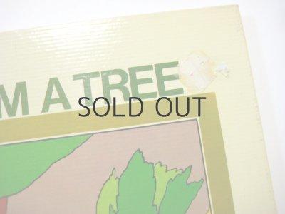 画像2: ミゲル・アンヘル・パチェーコ「I AM A TREE」1975年