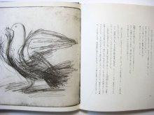 他の写真3: いぬいとみこ/司修「野の花は生きる -リディツェと広島の花たち-」1977年