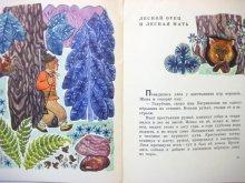 他の写真2: 【ロシアの絵本】ナターリヤ・パプラフスカヤ「Воробей готовит квас」1971年