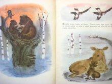 他の写真1: 【ロシアの絵本】ビアンキ/フランチェスカ・ヤールブソワ「Люля」1969年