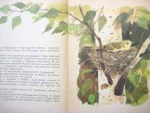 他の写真1: 【ロシアの絵本】ヴァレンチン・フェドートフ「Подкидыш」1984年