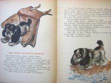 他の写真2: 【ロシアの絵本】エウゲーニー・チャルーシン「Тюпа, Томка и сорока」1965年