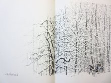 他の写真1: ロバート・フロスト/スーザン・ジェファーズ「白い森のなかで」1997年
