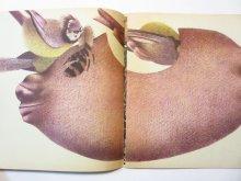 他の写真1: 【ベラルーシの絵本】ヤニナ・ジェルスキー「Пра сініцу з какосавага доміка」1979年