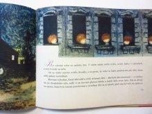 他の写真3: 【チェコの絵本】イジー・トゥルンカ「ZAHRADA」1962年