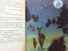 他の写真2: 【チェコの絵本】ミルコ・ハナーク「bambi」1971年