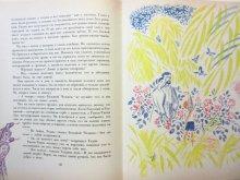 他の写真2: 【ロシアの絵本】ラドヤード・キップリング/マイ・ミトゥーリチ「Кошка, которая гуляла сам  а по себе」1989年