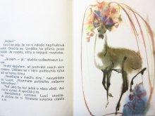 他の写真2: 【チェコの絵本】ミルコ・ハナーク「motyl pro tebe」1983年