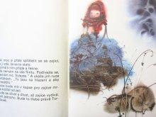 他の写真3: 【チェコの絵本】ミルコ・ハナーク「motyl pro tebe」1983年