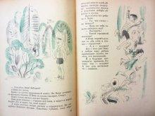 他の写真3: 【ロシアの絵本】イリヤ・トゥリチン/L.セリザロフ「Кому лететь?」1972年