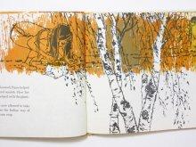 他の写真1: ベアトリス・ダーウィン「The Sunflower Garden」1969年