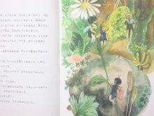 他の写真2: 【チェコの絵本】エレナ・チェプチェコバー/リュバ・コンチェコバー=ベセラー「みつばちのミッチー」1978年