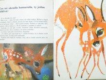 他の写真3: 【チェコの絵本】 ヨゼフ・バラーシュ「Srnecek Paruzek」1969年