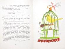 他の写真2: 【チェコの本】ダグマル・ベルコヴァー「DUM DROBNYCH RADOSTI」1968年