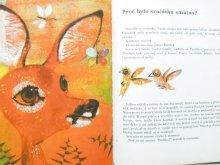他の写真1: 【チェコの絵本】 ヨゼフ・バラーシュ「Srnecek Paruzek」1969年