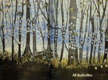 他の写真1: マーシャ・ブラウン「All Butterflies」1974年