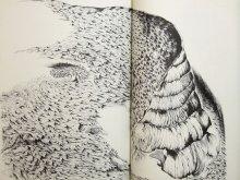 他の写真1: 木葉井悦子「耳界/木葉井悦子作品集」1979年