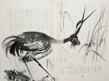 他の写真3: ヤーヌシ・グラビアンスキー画「動物童話集」1981年